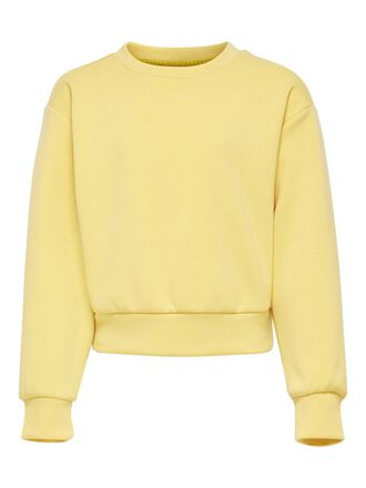 COULEUR UNIE SWEAT-SHIRT